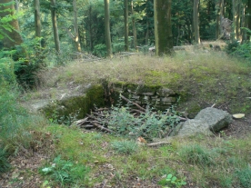 """""""Steintor"""" der Alteburg bei Essen-Werden"""
